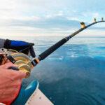 Havsfisketur för två